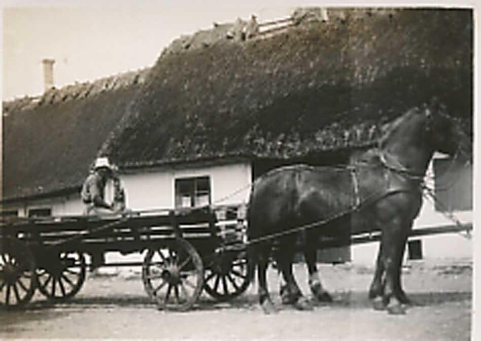 07-Fjeldvogn-på-gårdspladsen