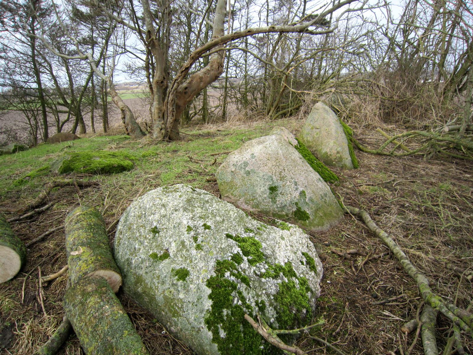 Randsten fra østlig side og den midterste sten ses i vestre side.