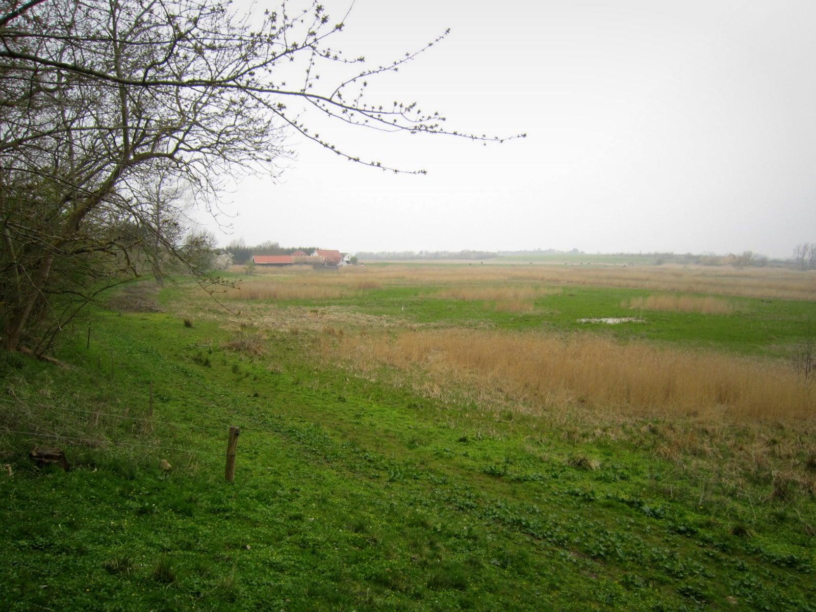 Møllesø med dæmningen som ses i horisonten.
